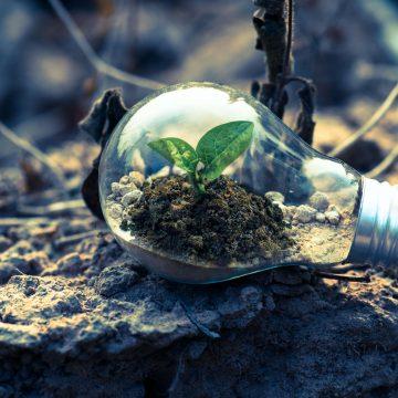 Kilka elementów nowoczesnego CSR-u. Wykorzystaj je w swojej firmie
